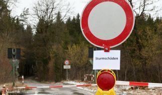 """Sturmtief """"Sabine"""" sorgte vielerorts für Wetterchaos und Schäden. (Foto)"""