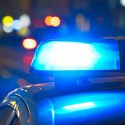 Frau auf Zug-Toilette missbraucht, Mann zerstückelt gehäutete Freundin (Foto)