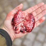 Gruselig! 30 Menschen getötet, verspeist und als Pastete verkauft (Foto)