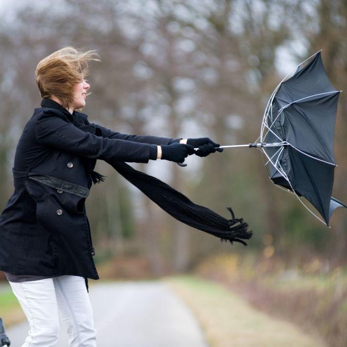 Unwetter-Gefahr! HIER drohen heftige Orkanböen und Gewitter (Foto)