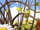 """""""Die Biene Maja"""" verpasst?"""