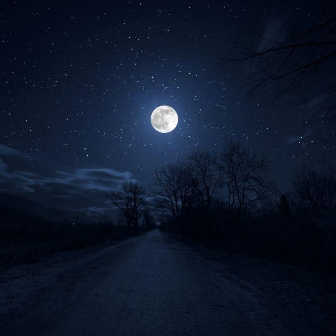 """Wissenschafts-Sensation! Zweiter """"Mond"""" umkreist Erde (Foto)"""