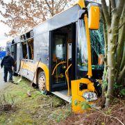 Schulbus kollidiert mit LKW - 22 Verletzte (Foto)