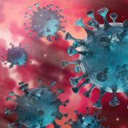 Labor steckt Menschenabsichtlich mit Covid-19-Virus an - für 4.000 Euro! (Foto)