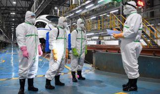 Warum kommen Pandemien immer wieder aus Asien? (Foto)