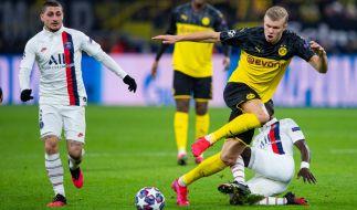 Löst der BVB gegen PSG das Ticket fürs Viertelfinale der Champions League? (Foto)