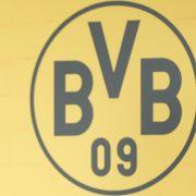 Stolz prangt das Logo des BVB auch bei diesem Spiel. (Symbolbild) (Foto)