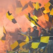 Dynamo kassiert Heim-Niederlage im Kampf gegen HSV (Foto)
