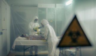 Welche tödlichen Viruserkrankungen bedrohen die Menscheit? (Foto)