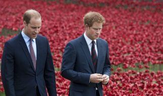 Wie zerrüttet ist das Verhältnis zwischen Prinz William und Prinz Harry tatsächlich? (Foto)