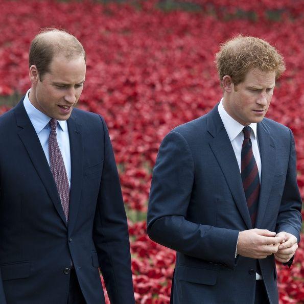 Royaler Arroganz-Anfall enthüllt! Ist Harry besser als sein Bruder? (Foto)