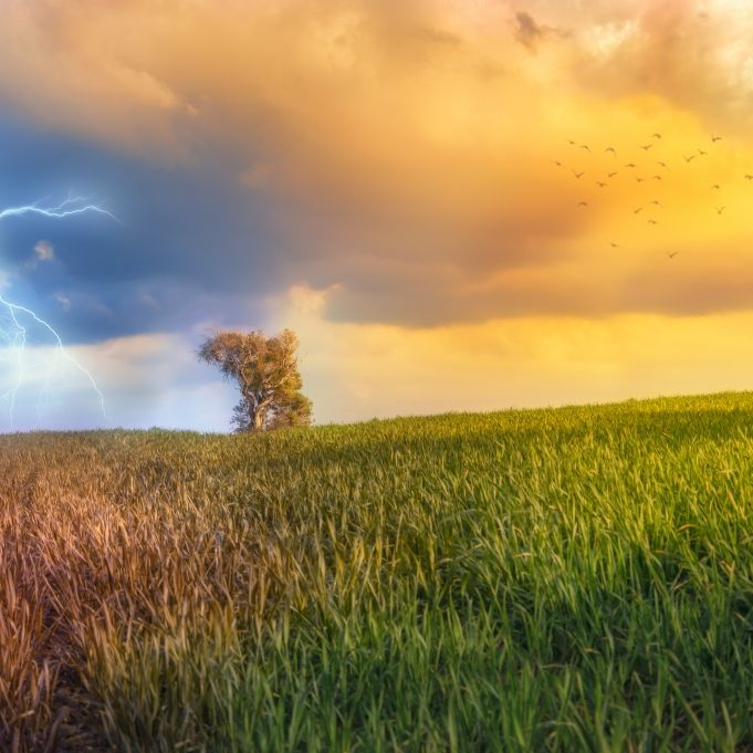 Trockener Hitze-Sommer? Wetter-Experten wagen erste Prognose (Foto)