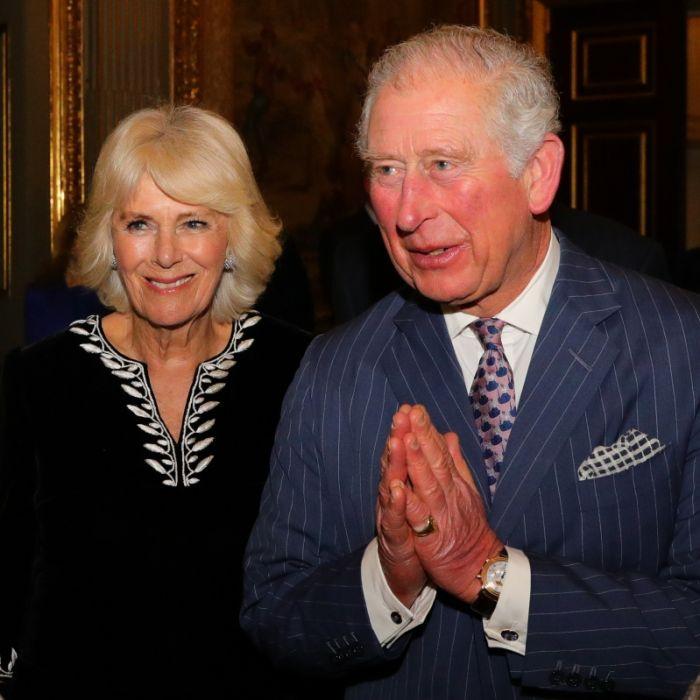 Coronavirus-Hausarrest mit Camilla Parker Bowles! Royals in Isolation (Foto)