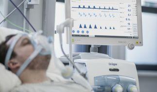Britische Forscher suchen nach einem Antikörper gegen das Coronavirus. (Foto)