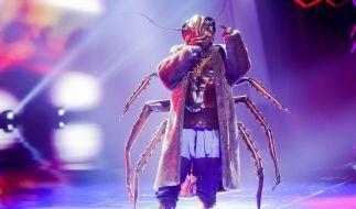 """Wer sich hinter der Kakerlake verbirgt, wurde in der dritten Live-Show von """"THe Masked Singer"""" 2020 enthüllt. (Foto)"""
