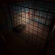 Behinderte Tochter in Kellerverlies gesperrt und vergewaltigt (Foto)