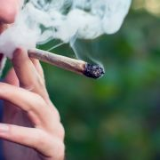 Cannabis als Covid-19-Wundermittel? Ärzte warnen vor Konsum (Foto)