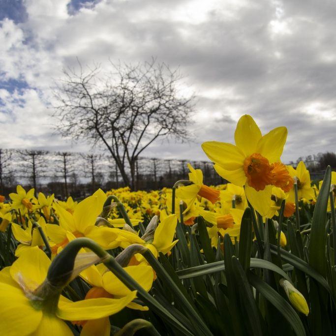 Ostern mit Blitz und Donner? So wird das Wetter an den Ostertagen (Foto)