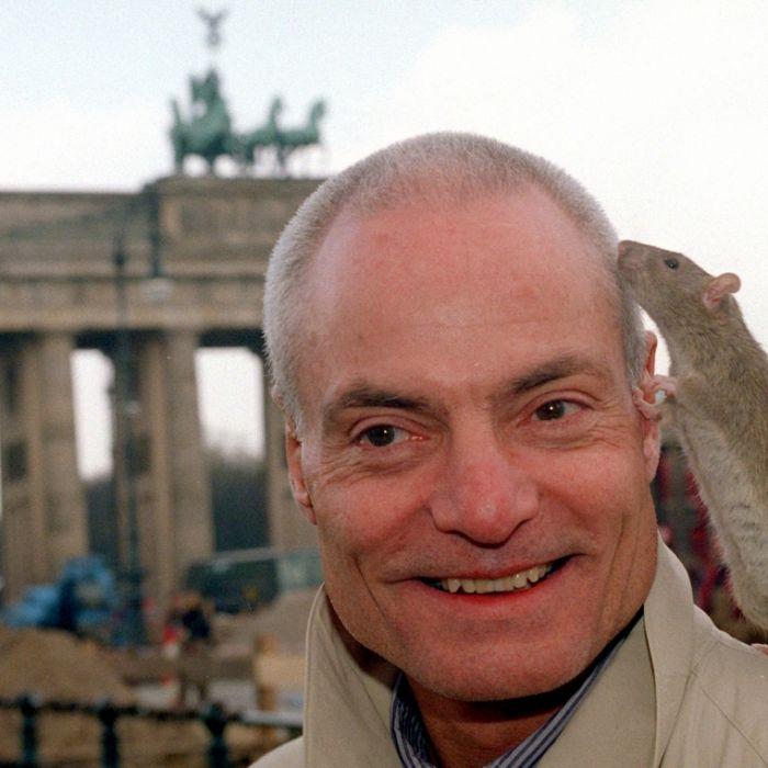 Todesursache unklar! Schauspiel-Star (78) gestorben (Foto)