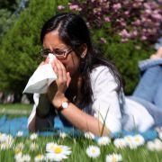 Haben Allergiker ein höheres Ansteckungsrisiko? (Foto)