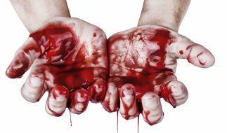 Der bestialische Mord an der walisischen Rentnerin Mabel Leyshon machte selbst hartgesottene Kriminalbeamte sprachlos (Symbolfoto). (Foto)