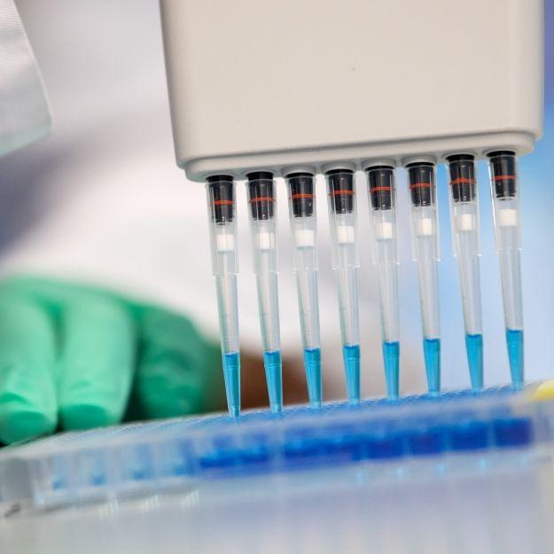 100 Prozent genau? Covid-19-Antikörper-Test entwickelt (Foto)