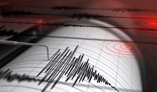 In Japan ereignete sich am Montag ein Erdbeben der Stufe 6,1. (Symbolfoto) (Foto)