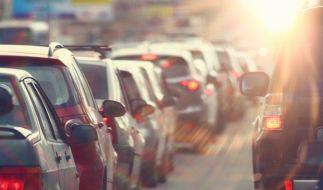 Ab 28. April tritt die Novelle der Straßenverkehrsordnung 2020 in Kraft. (Foto)