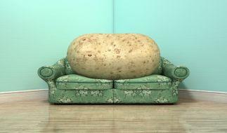 Echte Couch-Potatos! DIESE Sternzeichen lassen sich während der Corona-Krise am meisten gehen. (Foto)