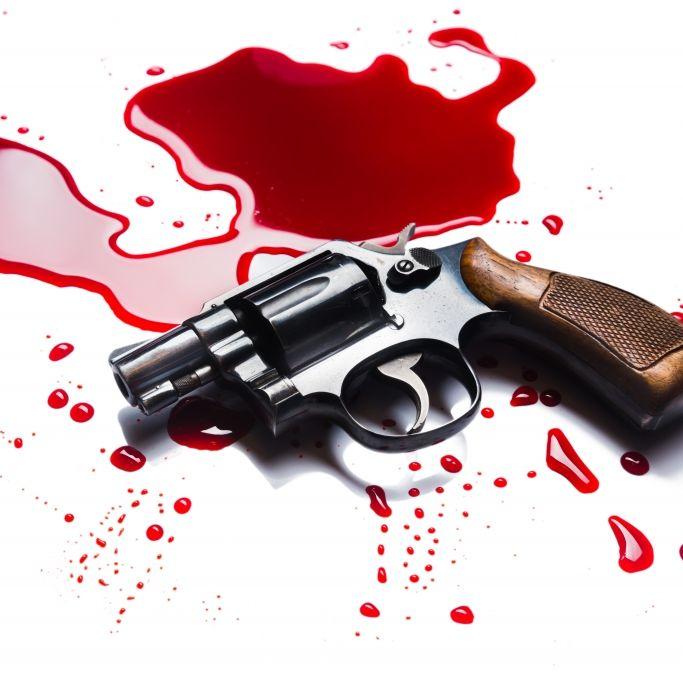 Siebenjähriger erschießt Schwester (3) mit Schrotflinte (Foto)