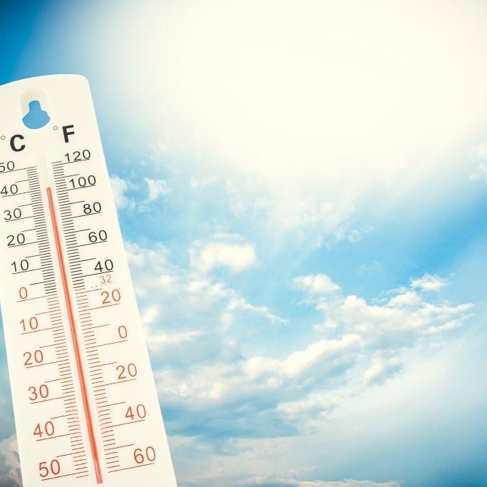 Hitze-Horror droht! Meteorologen befürchten Temperaturrekorde (Foto)