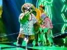 """""""Masked Singer""""-Finale 2020"""