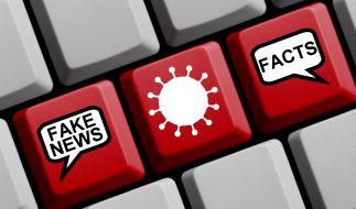 Verschwörungstheorien in der Coronakrise haben gefährliche Auswirkungen. (Symbolfoto) (Foto)