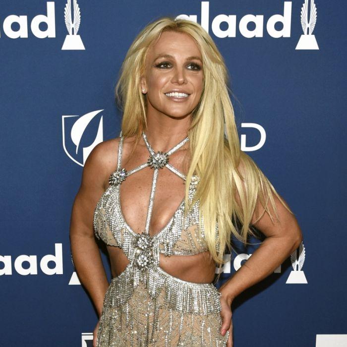 Pop-Königin in der Wüste! Britney, bist du es wirklich? (Foto)