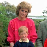 Royale Hellseherin sicher! Lady Di will Prinz Harry von Meghan erlösen (Foto)