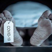 Obduktion von Corona-Opfern! SO sollen sie Covid-19-Infizierten helfen (Foto)