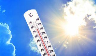 Wird 2020 das heißeste Jahr seit Beginn der Wetteraufzeichnungen? (Foto)