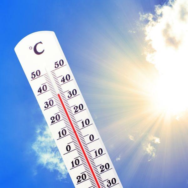 Über 40 Grad Hitze! Wetterdienst warnt vor Rekord-Sommer (Foto)