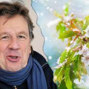 """""""Es gibt keine Eisheilige!"""" TV-Wettermann kritisiert """"Wurstmedien"""" (Foto)"""