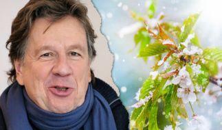 """Jörg Kachelmann rechnet mit """"Wurstmedien"""" ab. (Foto)"""