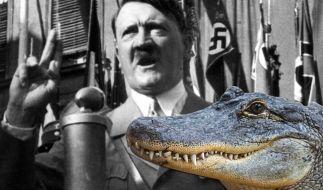 Alligator Saturn, der angeblich Adolf Hitler gehört haben soll, ist gestorben. (Foto)
