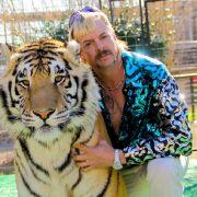 """Drogen-Skandal! Spritzte der """"Tiger King"""" Mitarbeitern Narkosemittel? (Foto)"""