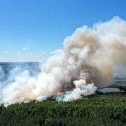 Gefahrenstufe 5! Experten warnen vor Glut-Horror in deutschen Wäldern (Foto)