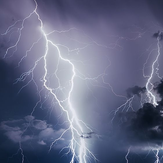 CDU-Politiker (44) im Garten vom Blitz getroffen - TOT! (Foto)