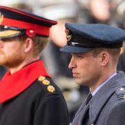 Royal-Insider enthüllt! DESHALB bekriegen sich die Brüder (Foto)