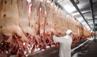 Die Arbeitsbedingungen in der Fleischindustrie sind dramatisch. (Foto)