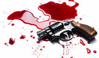 Ein sieben Jahre altes Mädchen ist bei einer Schießerei in den USA durch einen Kopfschuss getötet worden (Symbolbild). (Foto)