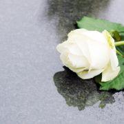 Todes-Drama! Britische TV-Legende (81) plötzlich gestorben (Foto)
