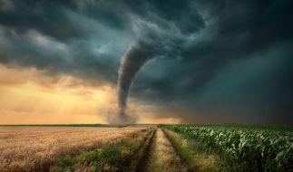 Am Mittwoch droht in vielen Teilen Deutschlands eine Unwetterwarnung wegen heftiger Sturmböen. Es herrscht sogar Tornadogefahr. (Foto)