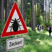 Zecken-Hölle Deutschland! HIER droht Gesundheitsgefahr (Foto)